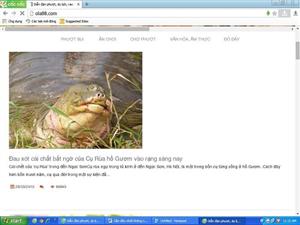 Về thông tin cụ Rùa Hồ Gươm chết: Có thể khởi tố vụ án hình sự